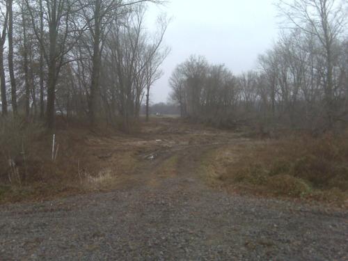 West Side of Broom Tree Lane